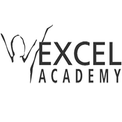 The Excel Academy