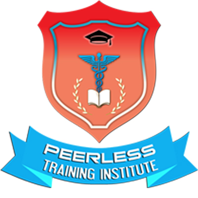Peerless Training Institute